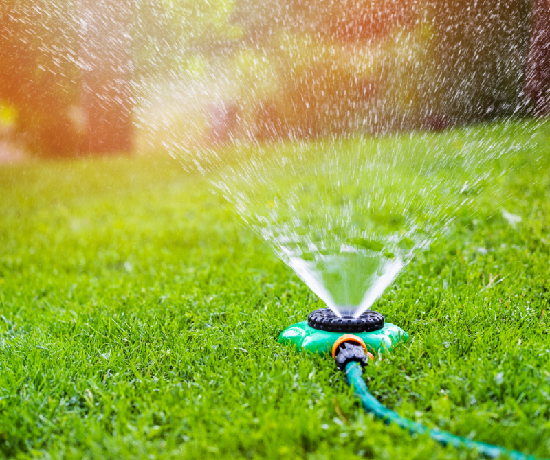 A hose-end sprinkler on a bright green lawn.